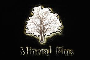 ผลงานป้าย Mineral Plus