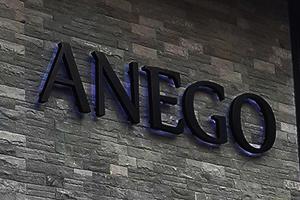 ผลงานป้าย Anego