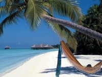 PACKAGE TOUR MALDIVES  CLUB MED